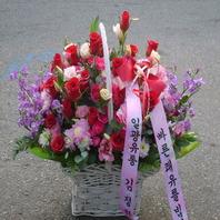 신상품풍성한꽃바구니